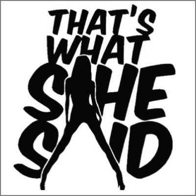 Thats What She Said Vinyl Sticker for your wall,